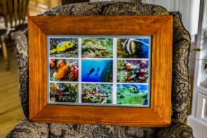 Fiji Frame